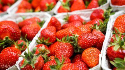 Marmeladen-Erdbeeren