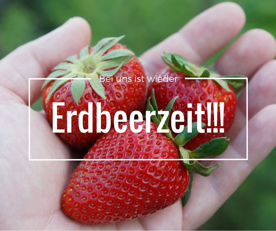 Logo_Erdbeerzeit