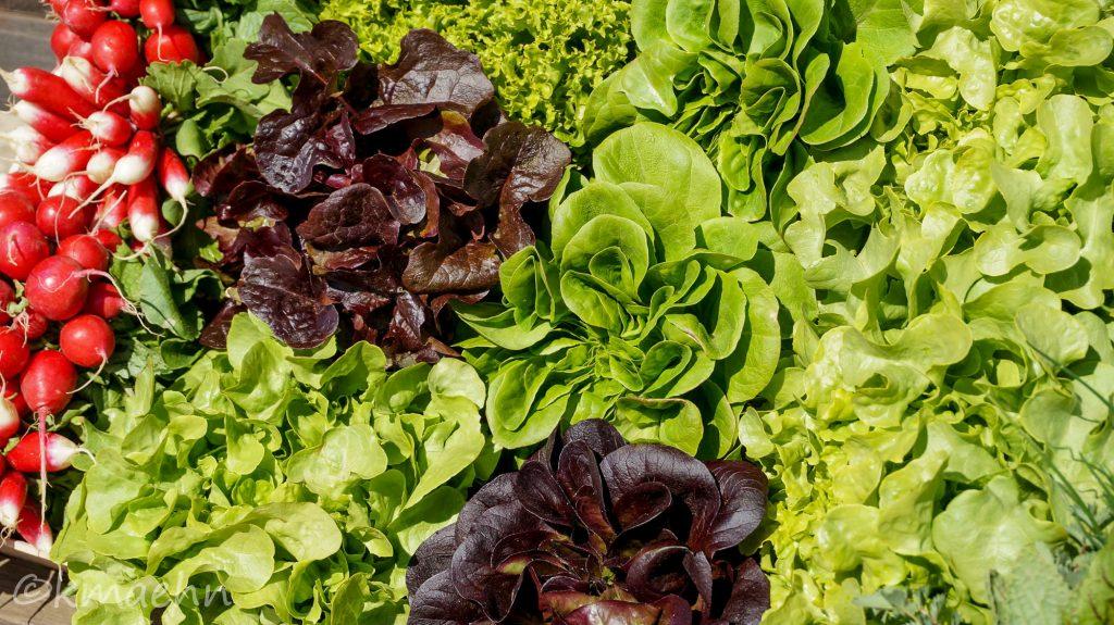 Bischemer Salat